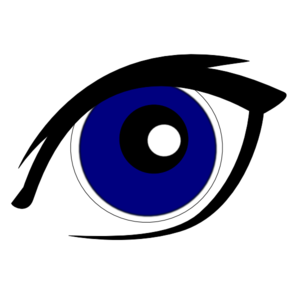 S clip art at. Eyebrow clipart blue eye png download