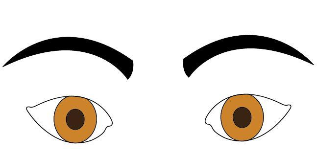 Eyebrow clipart eyebrow shape. What do different shapes
