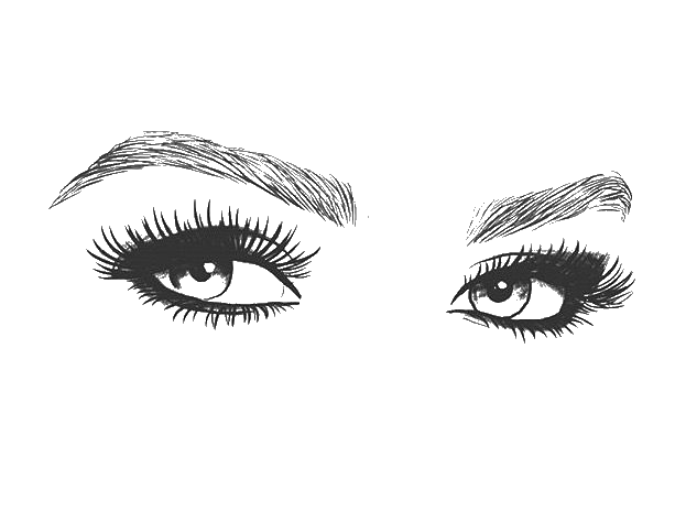 Eyebrow clipart long eyelash. Sketch images gallery for
