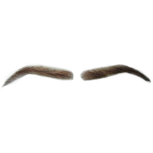 Eyebrow png transparent. Brow image related wallpapers