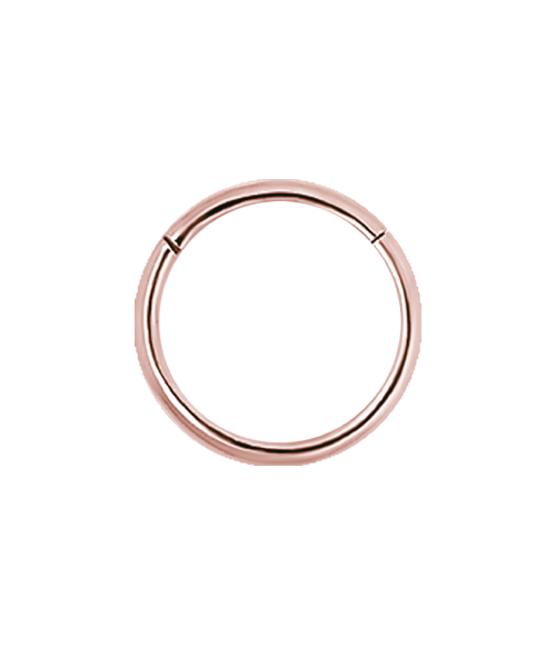 Eyebrow ring png. Rose gold archives jenna