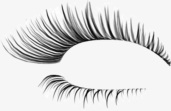 Eyelash clipart fake eyelash. Thick eyelashes thin holiday