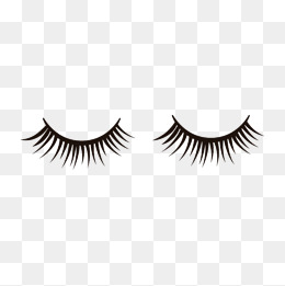 Eyelash clipart fake eyelash. Eyelashes png vectors psd