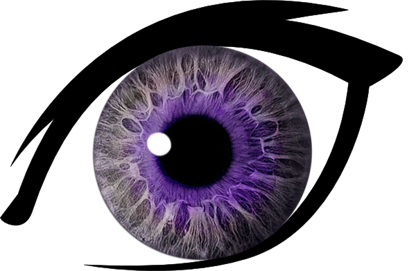 Eyelash clipart purple eye. Free images at clker