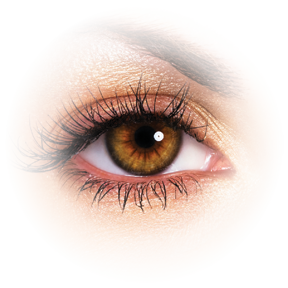 Eyelash clipart transparent background. Eyes on you png