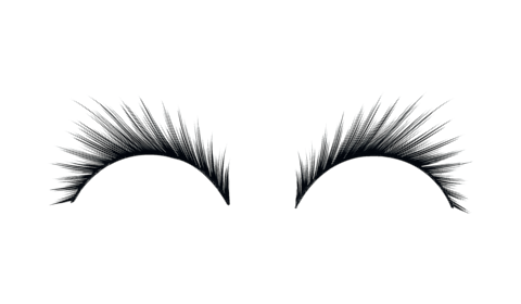 Lashes png. Eyelashes transparent stickpng download