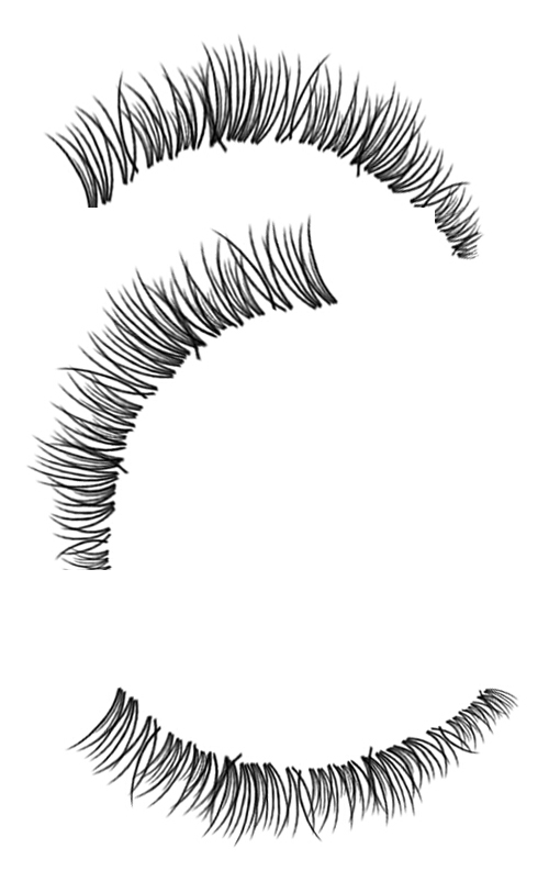 Eyelashes clipart brushes photoshop. Eyelash brush manqal hellenes
