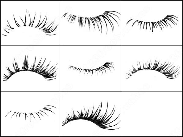 Eyelashes clipart brushes photoshop. Eyelash brush in abr