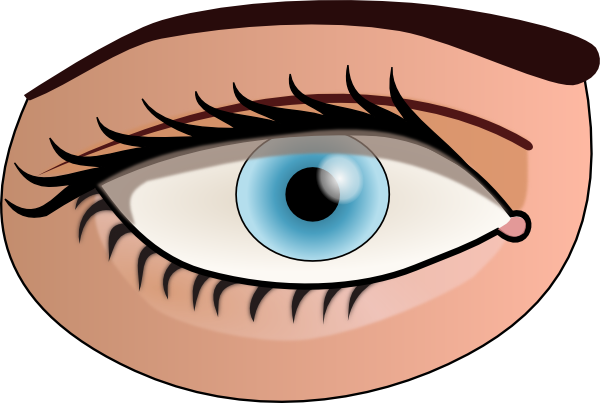 Eyes clipart png. Eye clip art at