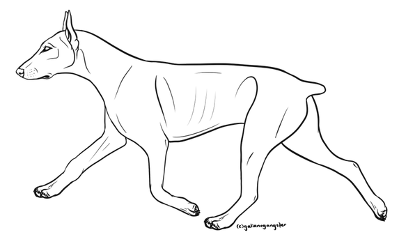 Face clipart doberman. Drawing easy for