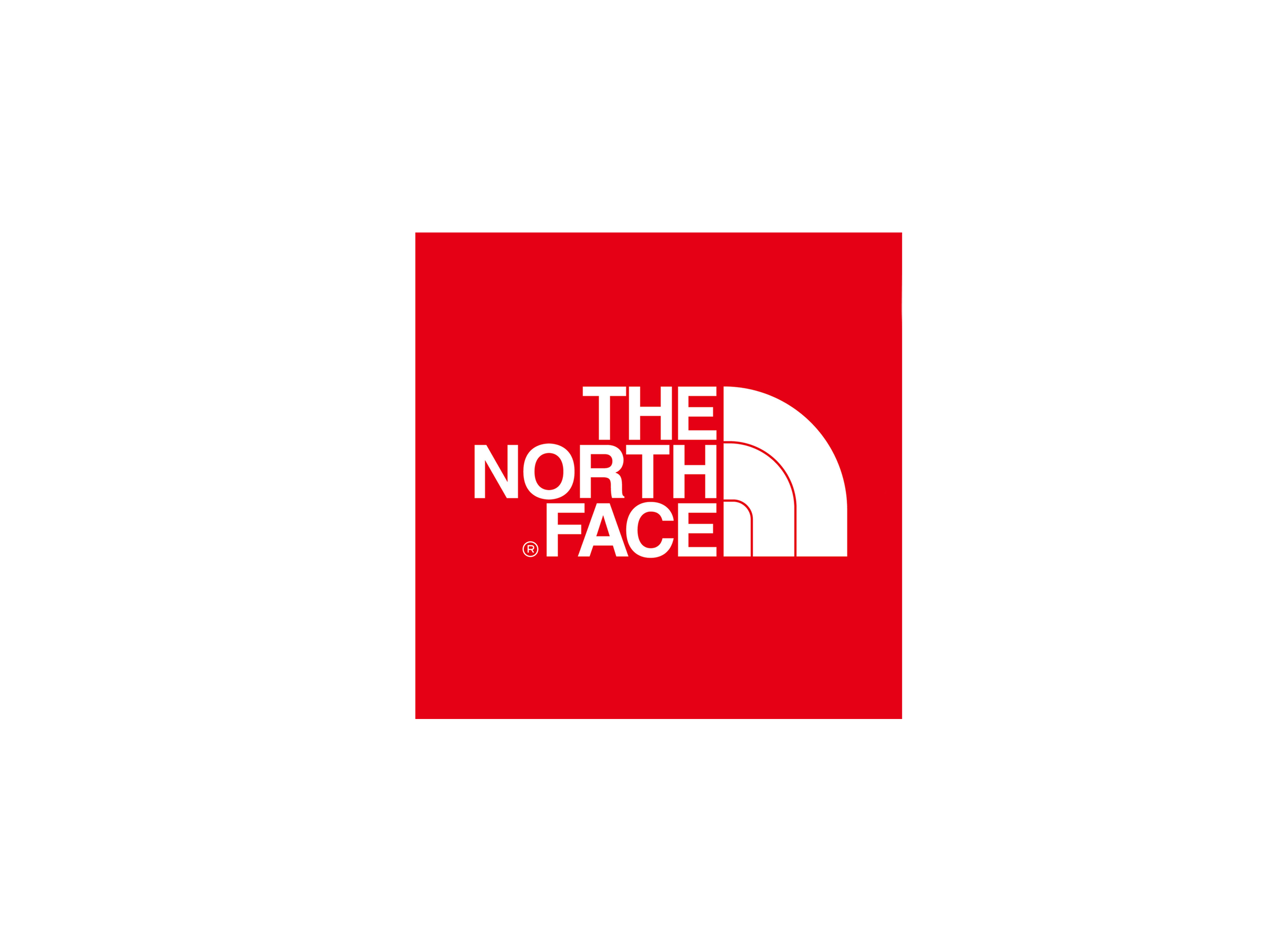 Face logo png. The north transparent stickpng