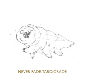 Fade drawing. Never tardigrade by dnageeks