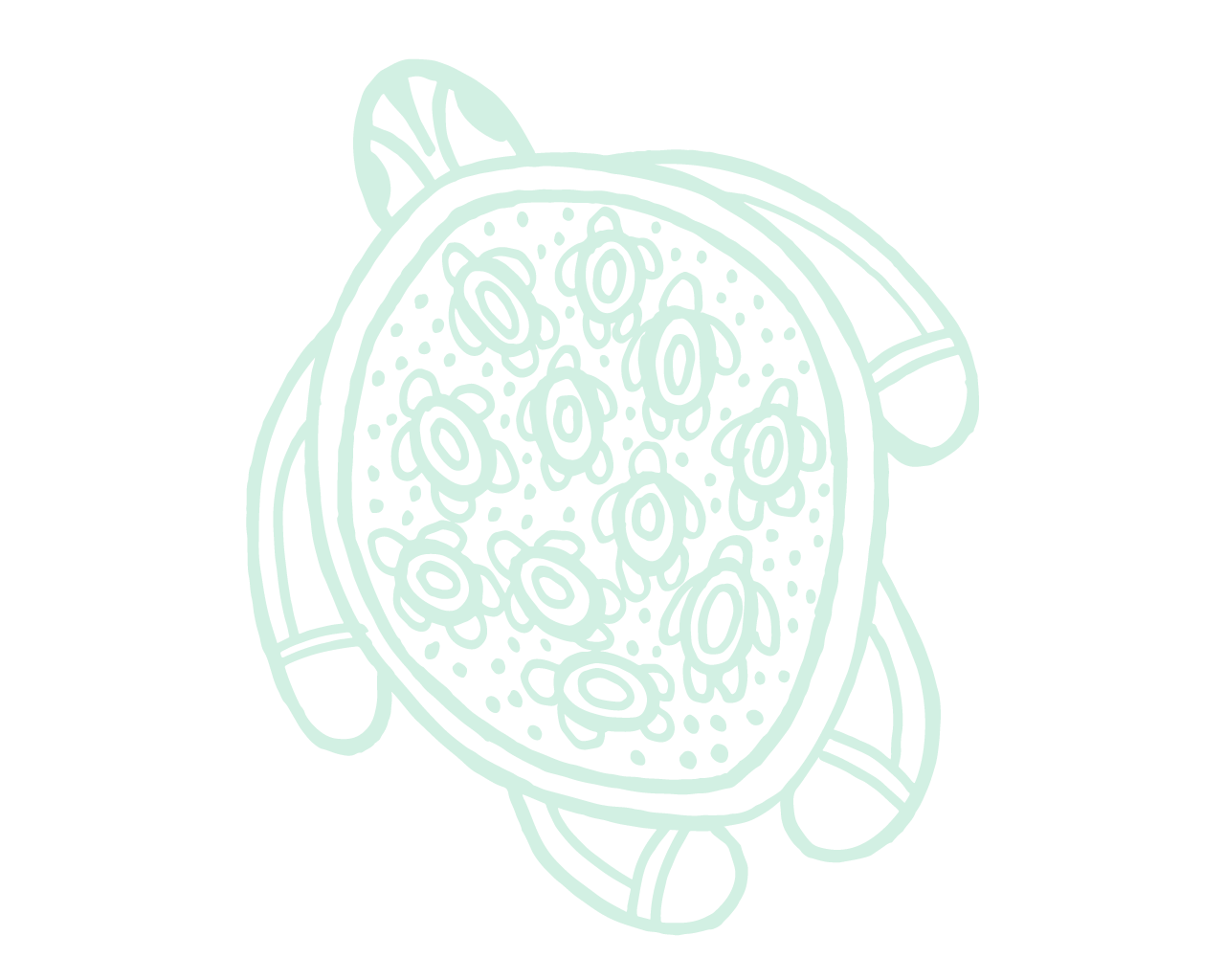 Fade drawing basic. Green turtle brams contact
