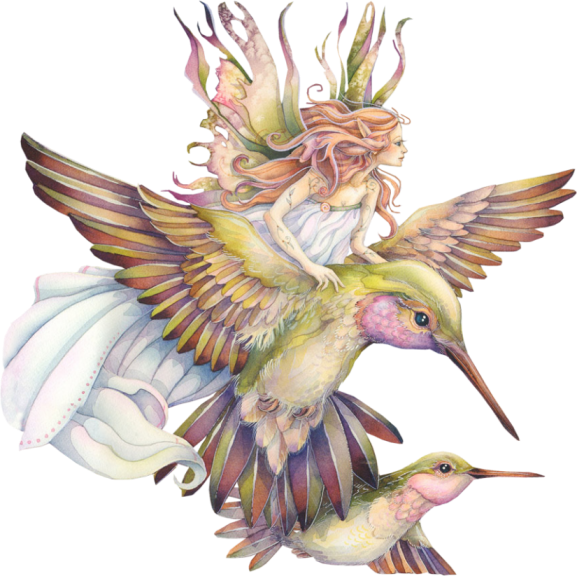 Faerie drawing hummingbird. Fairies gifs and pictures