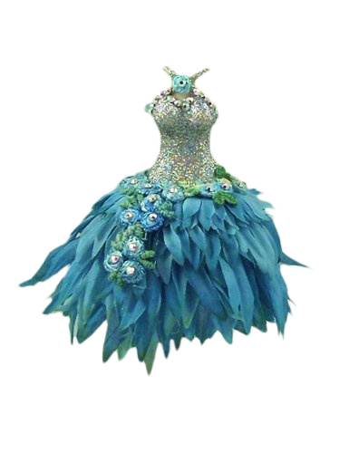 fairy clothes png