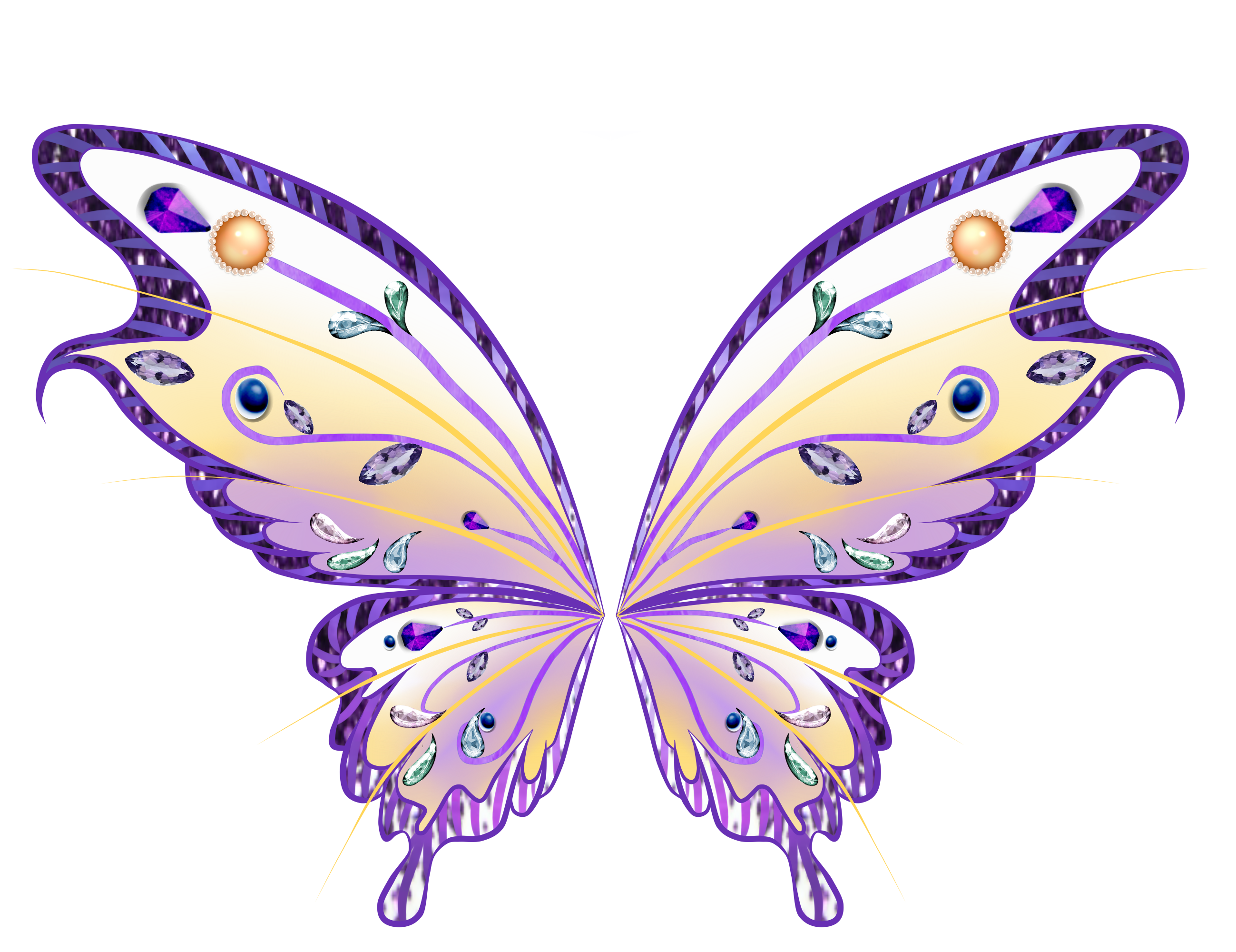 Fairy wing png. Viewing gallery for wings