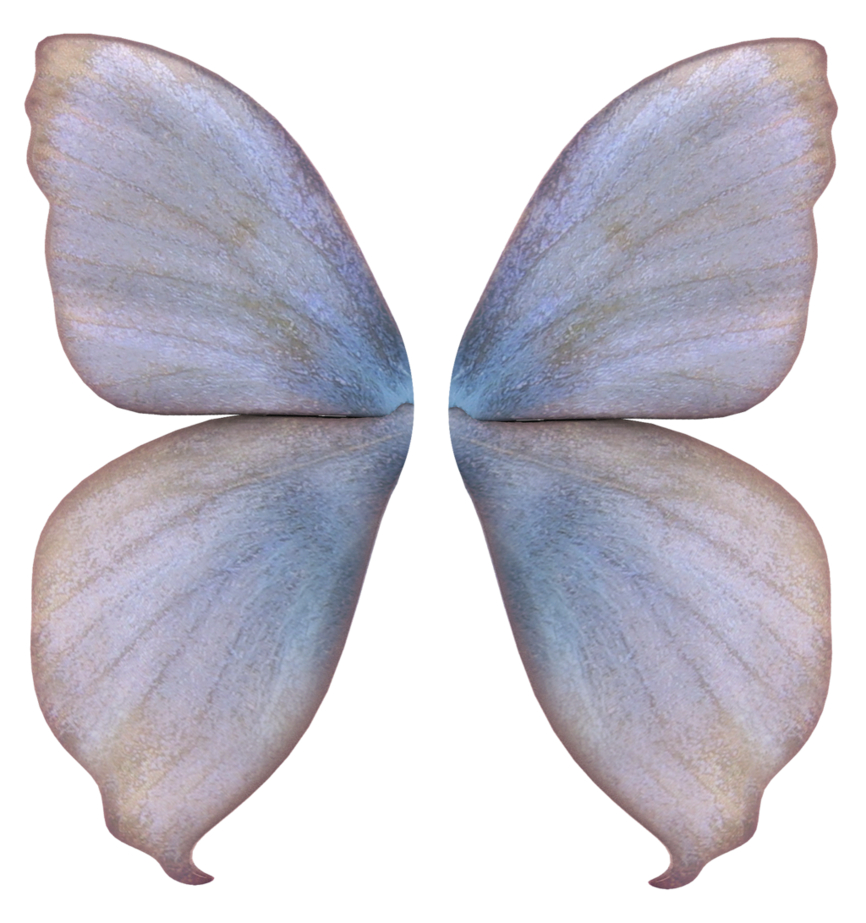 Fairy wings png. Unrestricted by frozenstocks on