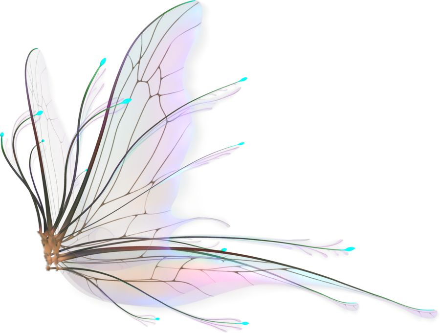 Fairy wings png. By naughtygirlgraphics deviantart com