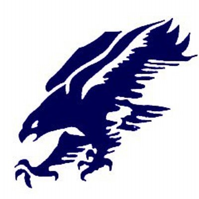 Falcon clipart blue falcon. The blueflcn twitter