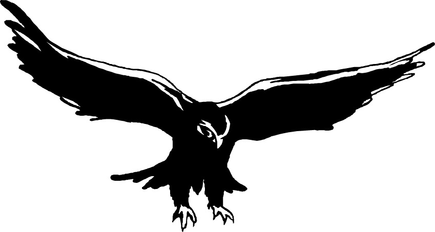 Muscle clipart falcon. Panda free images clip