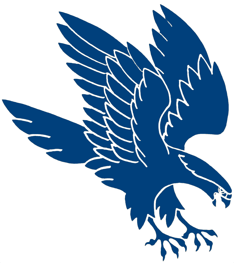 air force falcons logo png