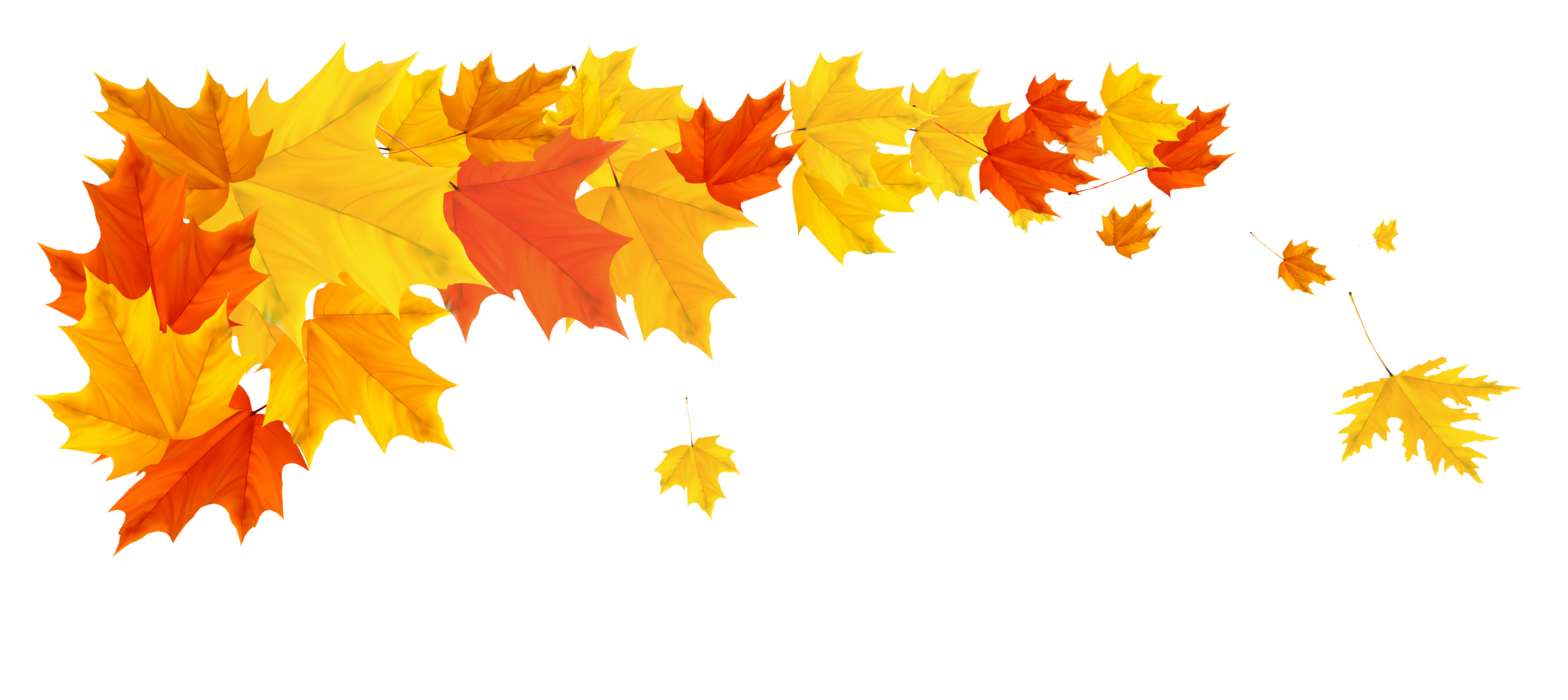 Corner transparent fall leaves. Orange leafs png clipart