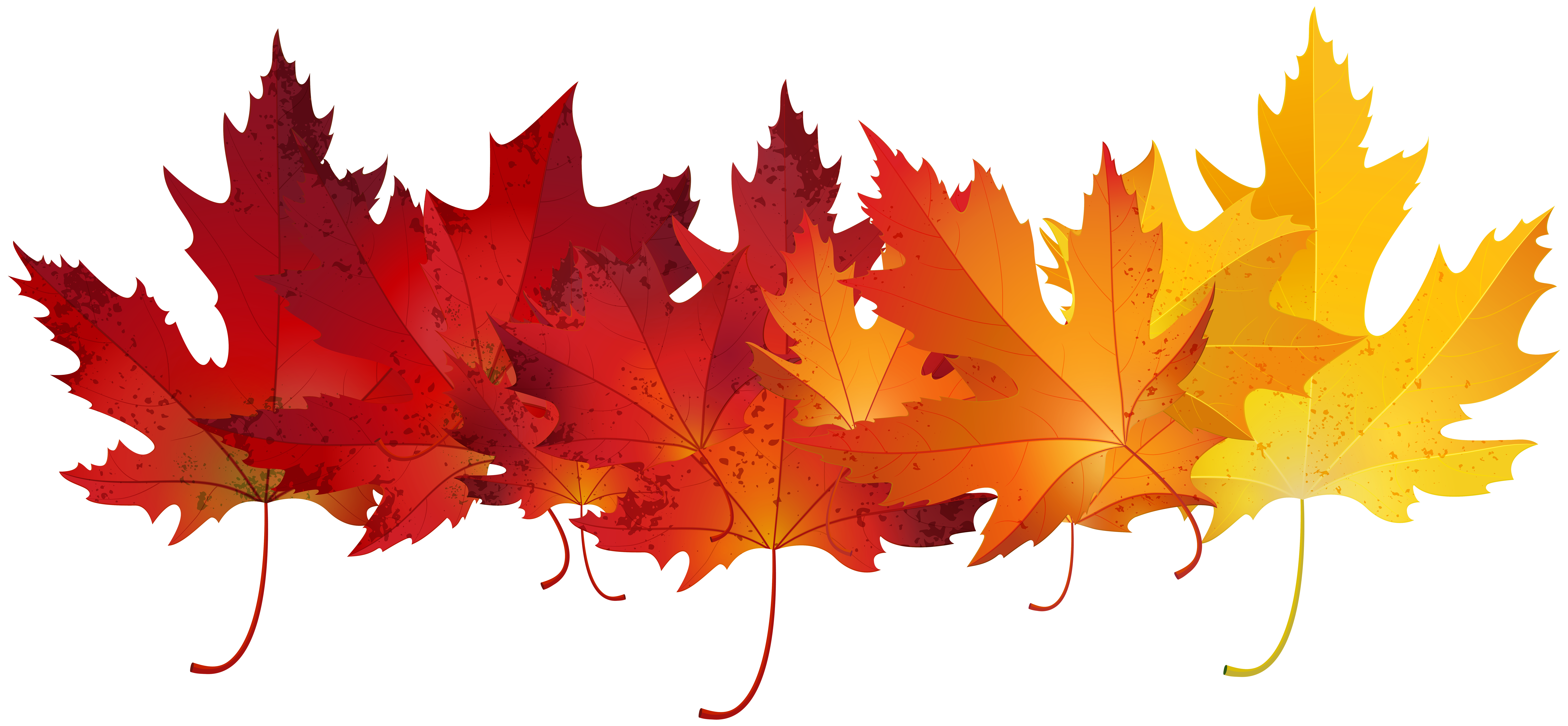 Fall banner png. Red autumn leaves transparent