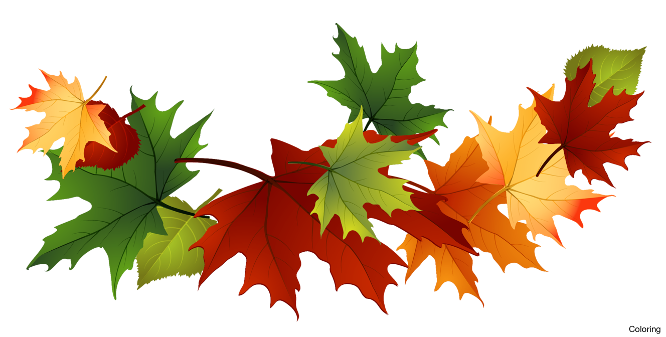 Fall clipart. Majestic autumn leaves clip