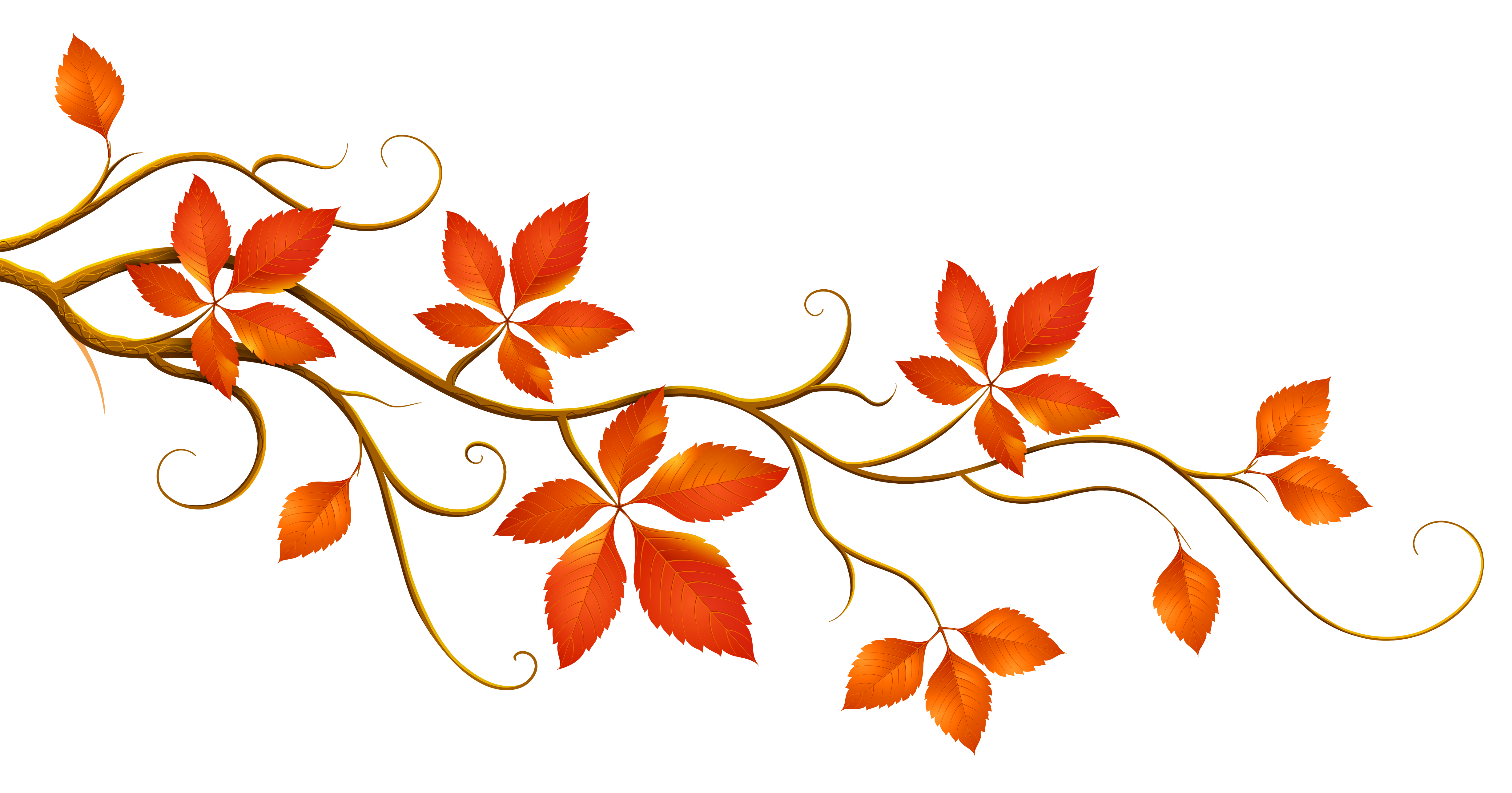 Decorative branch with autumn. Fall clipart image transparent