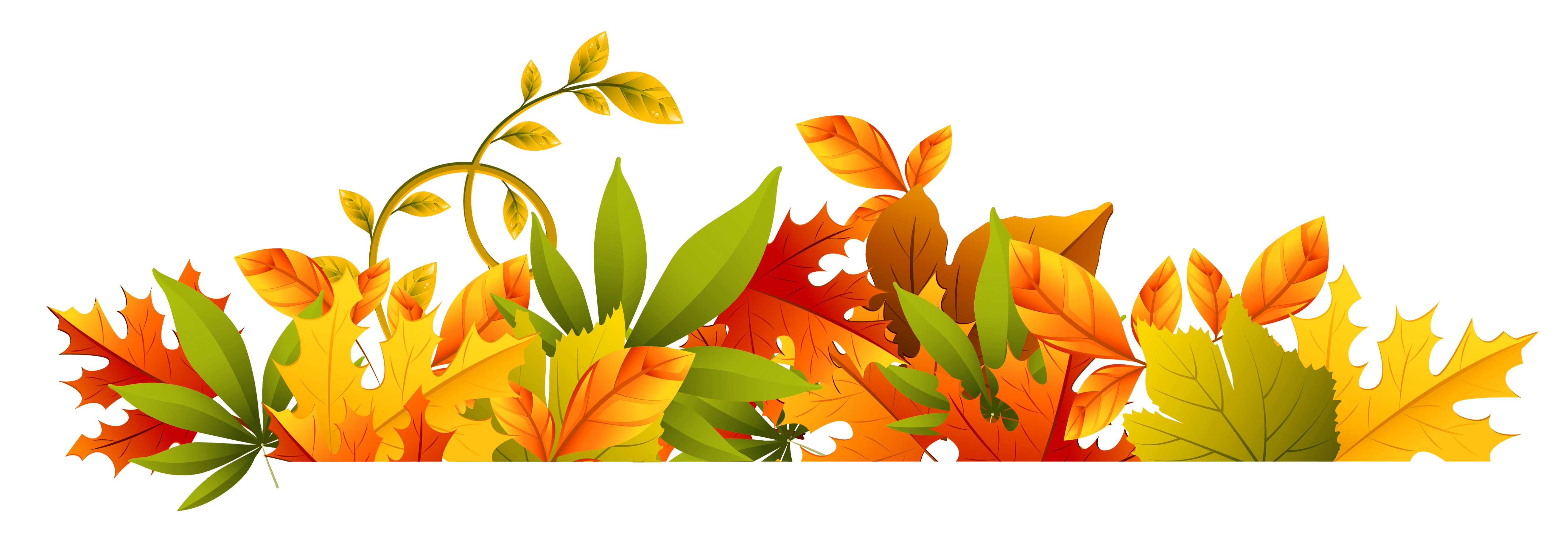 Fall floral png. Flowers border new transparent