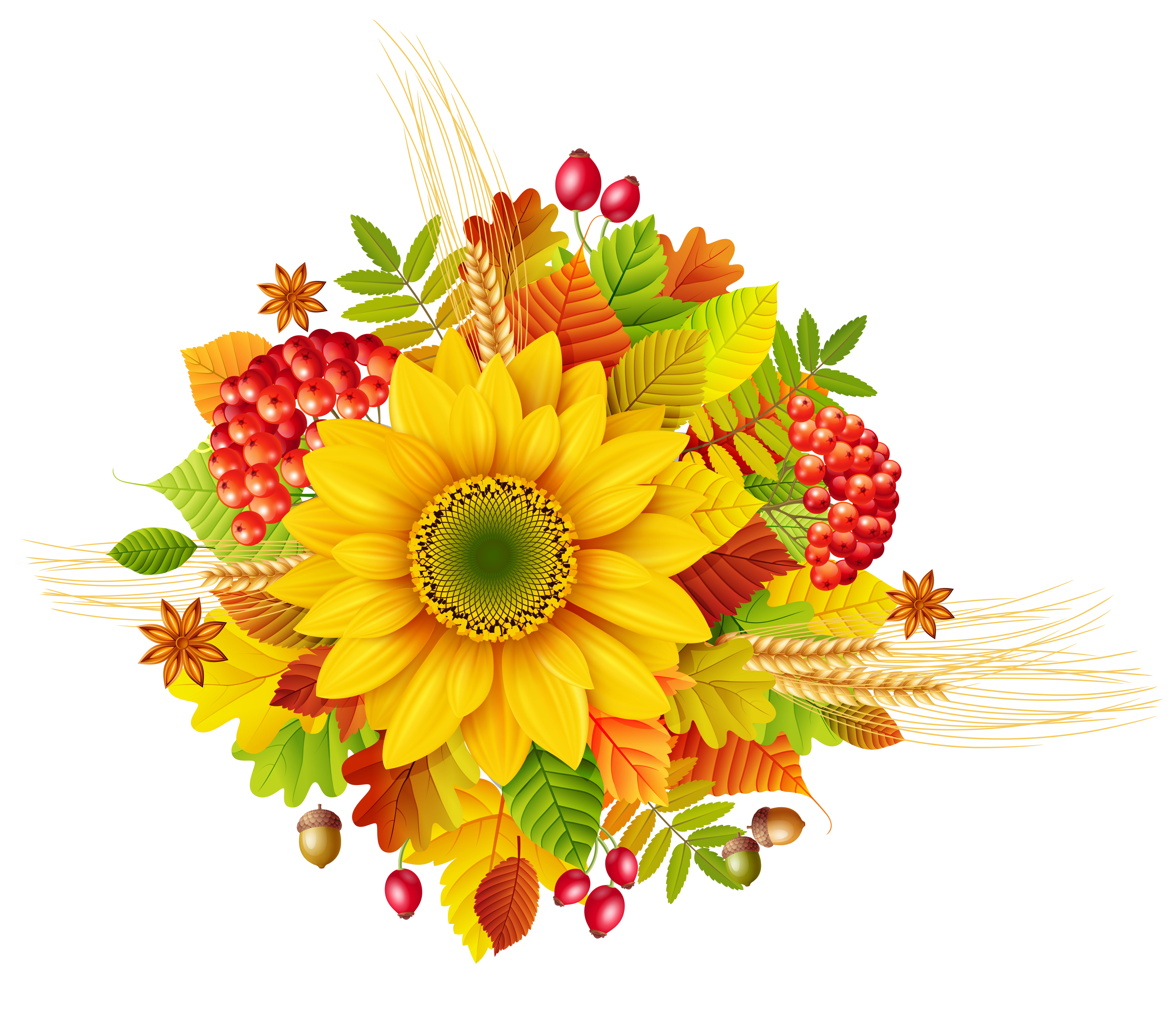 Fall flower png. Autumn decor clipart picture