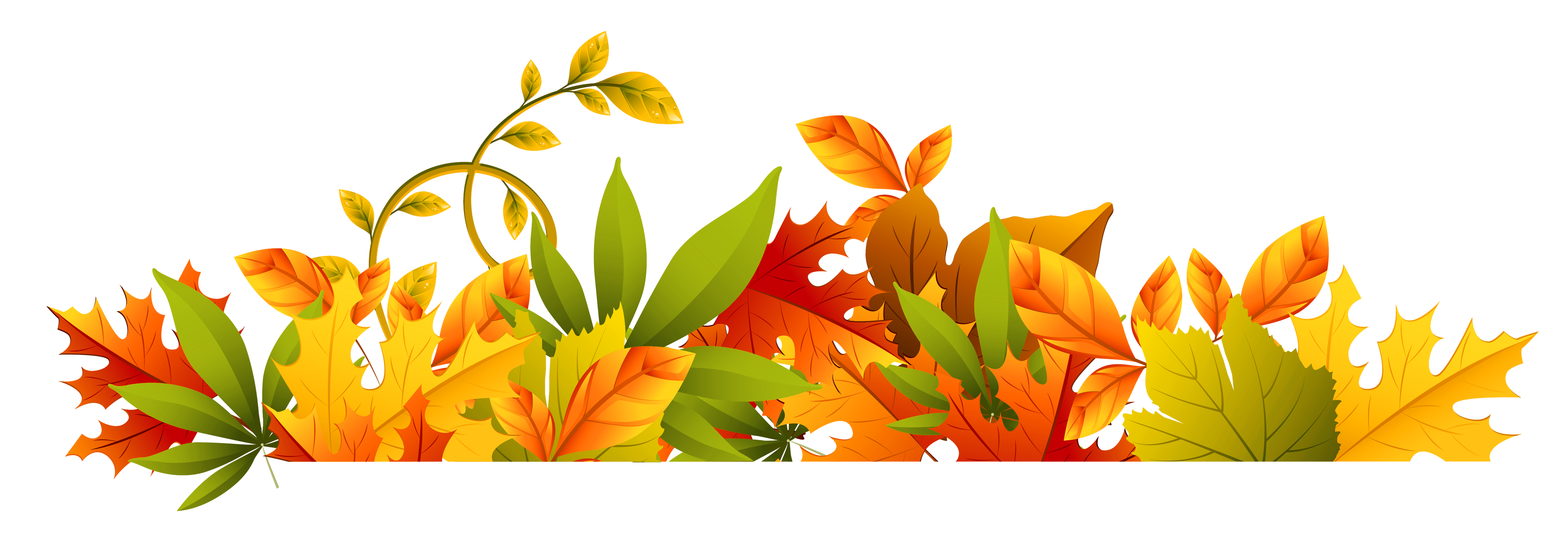 Fall flower png. Transparent autumn border clipart