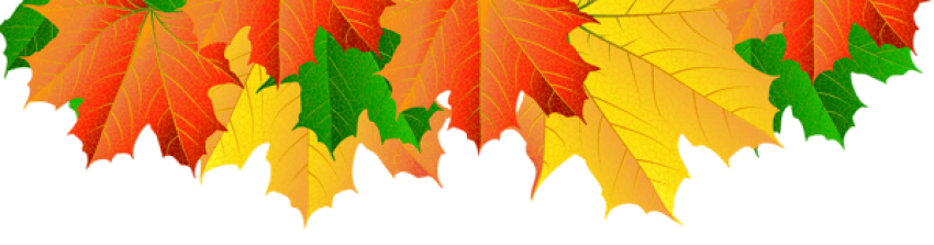 Fall leaf border png. Download leaves clipart photo