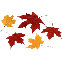 Fall leaf .png. Download autumn leaves free