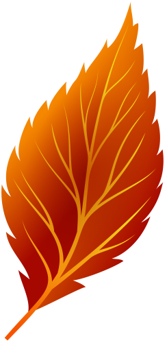 Fall leaf .png. Red autumn png clip