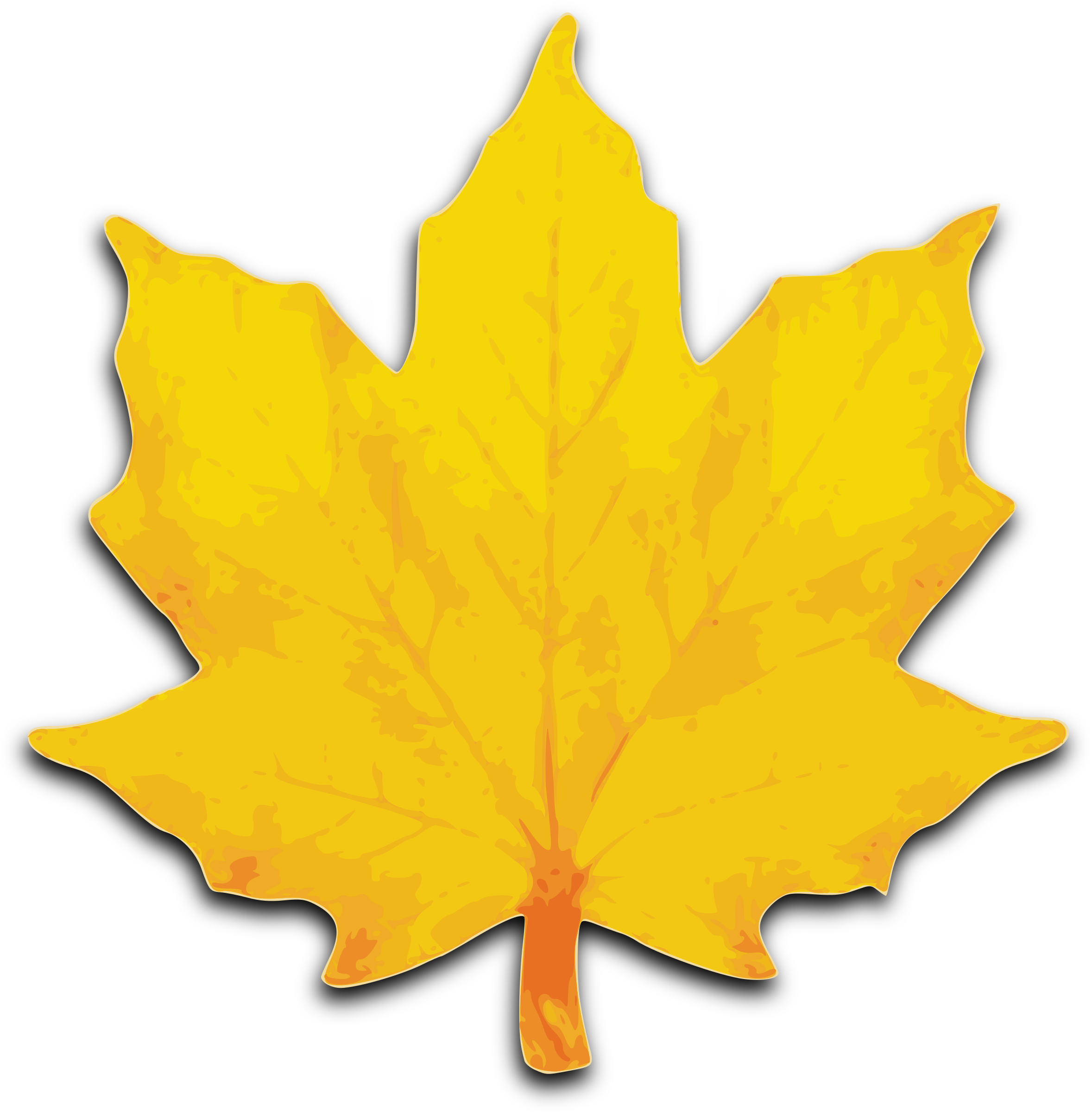 Fall leaf vector png. M icons free and