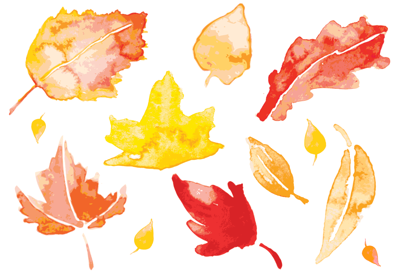 Leave vector watercolor. Autumn leaves painting leaf
