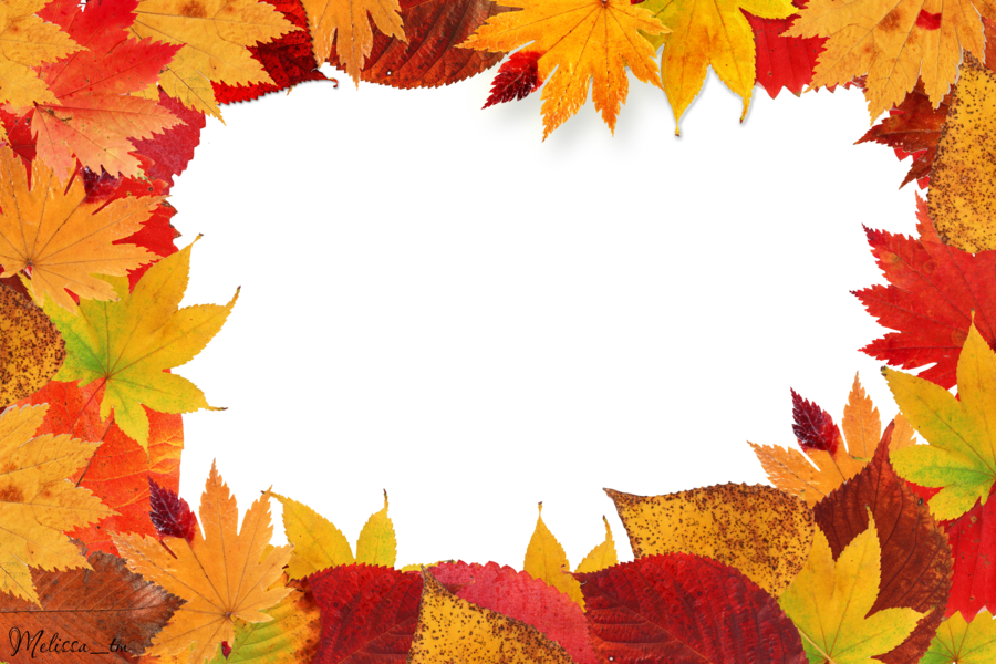 Fall frame png. Autumn leaves images transparent