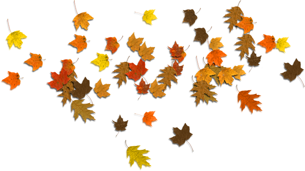 Fall leaves background png. Falling autumn image arts