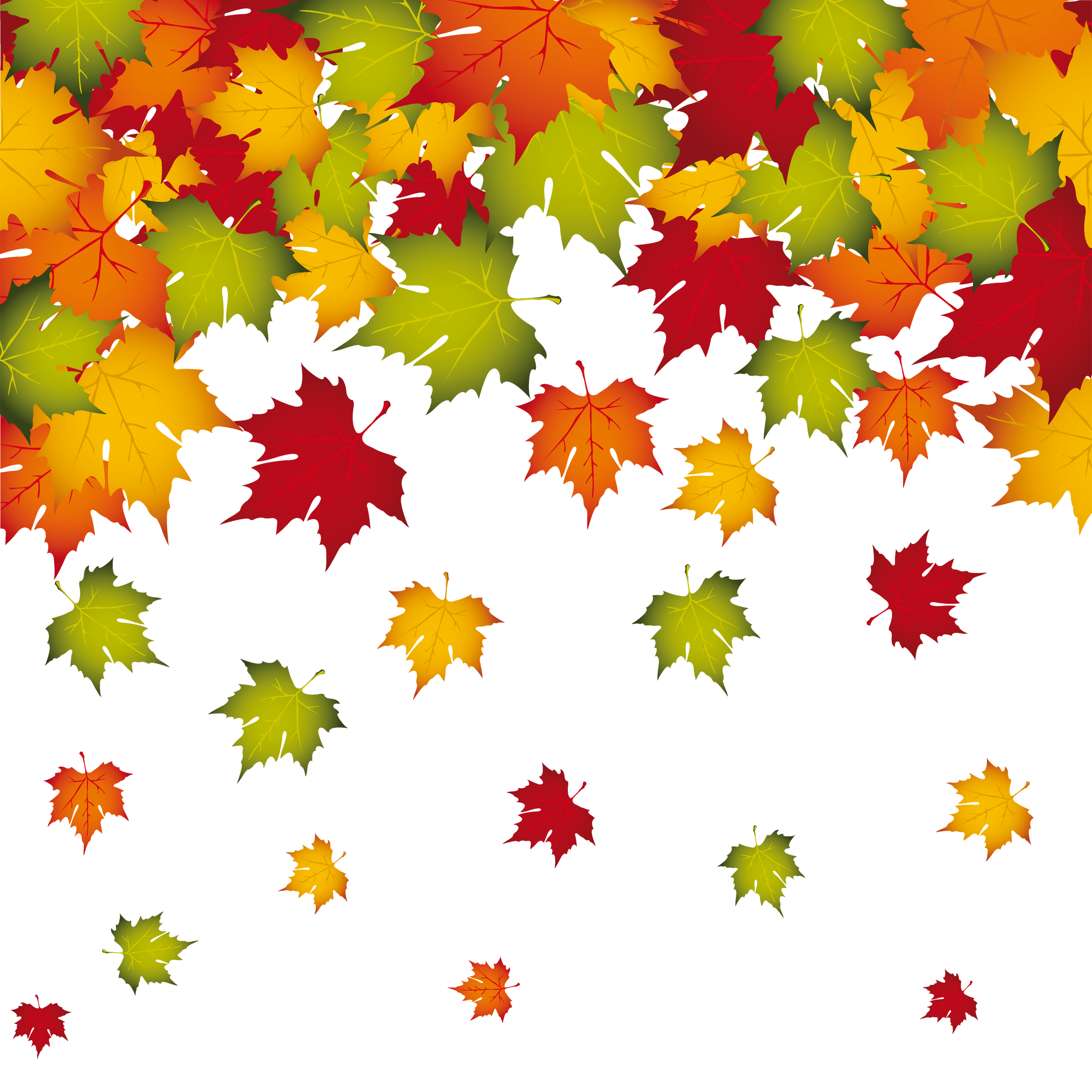 Fall leaves border labels png. Transparent decoration image gallery