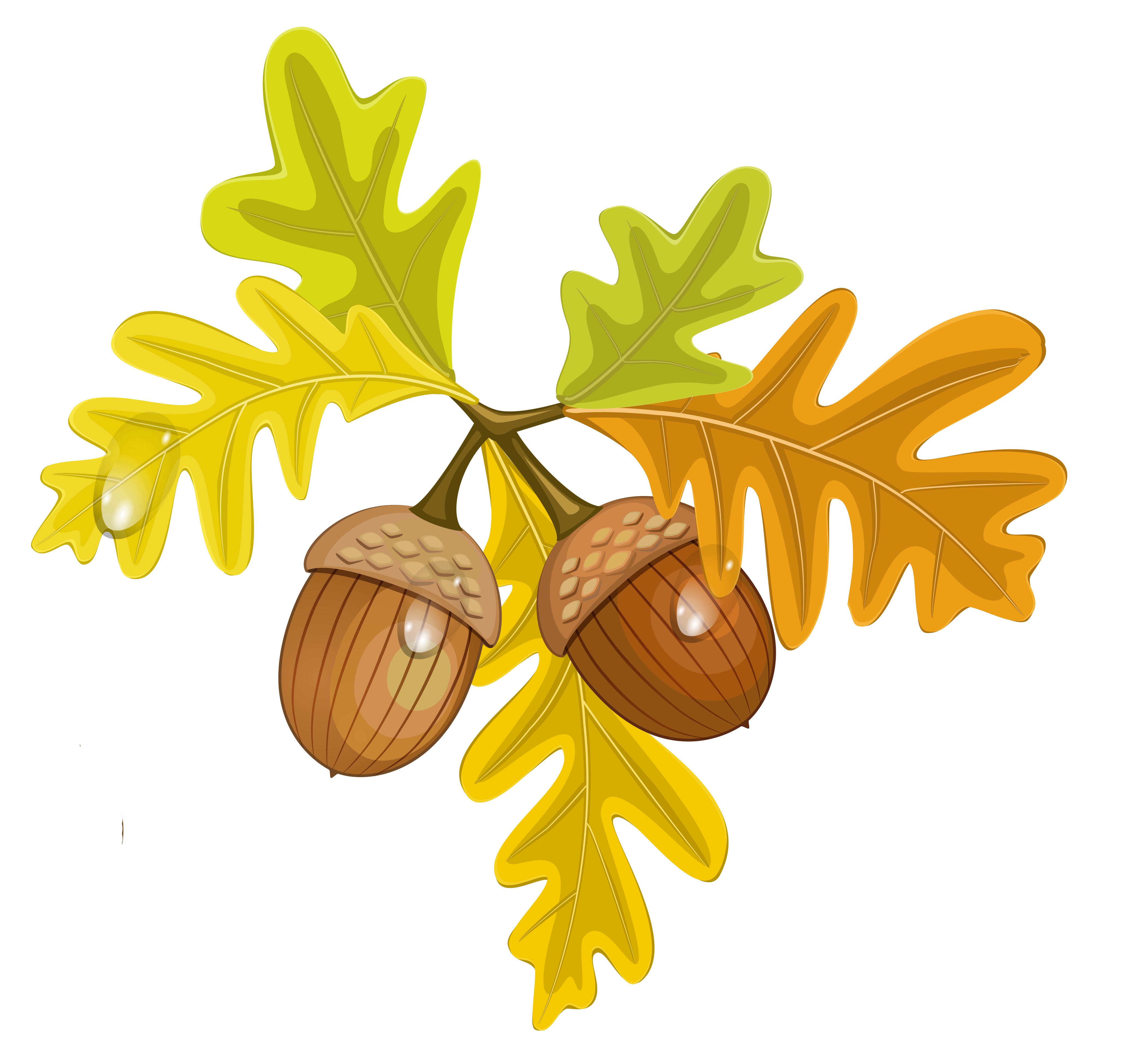 Fall leaves border labels png. Transparent with acorns gallery
