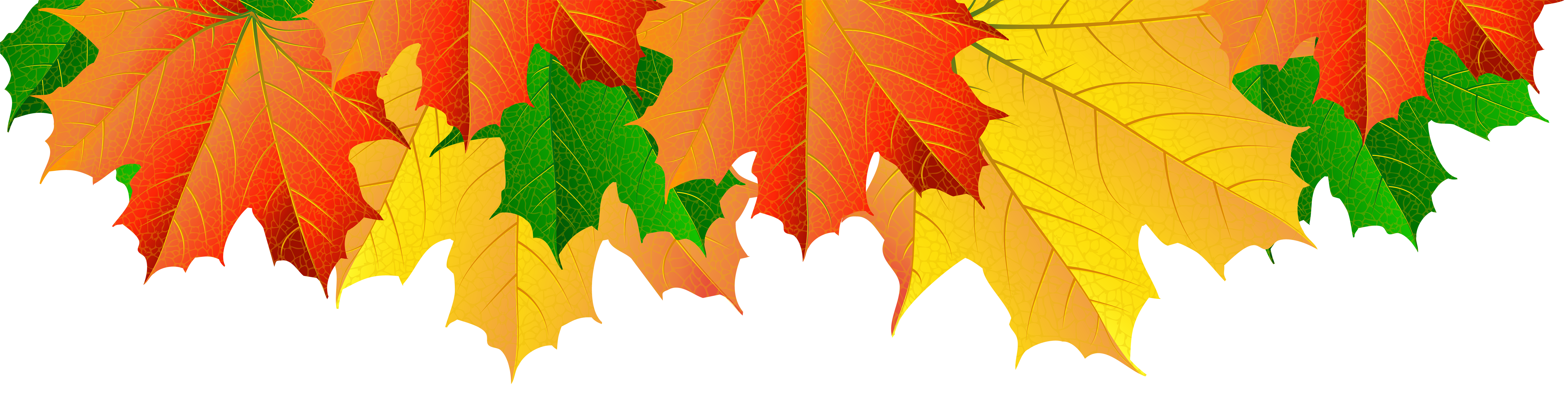 Fall leaves border png. Clip art image gallery