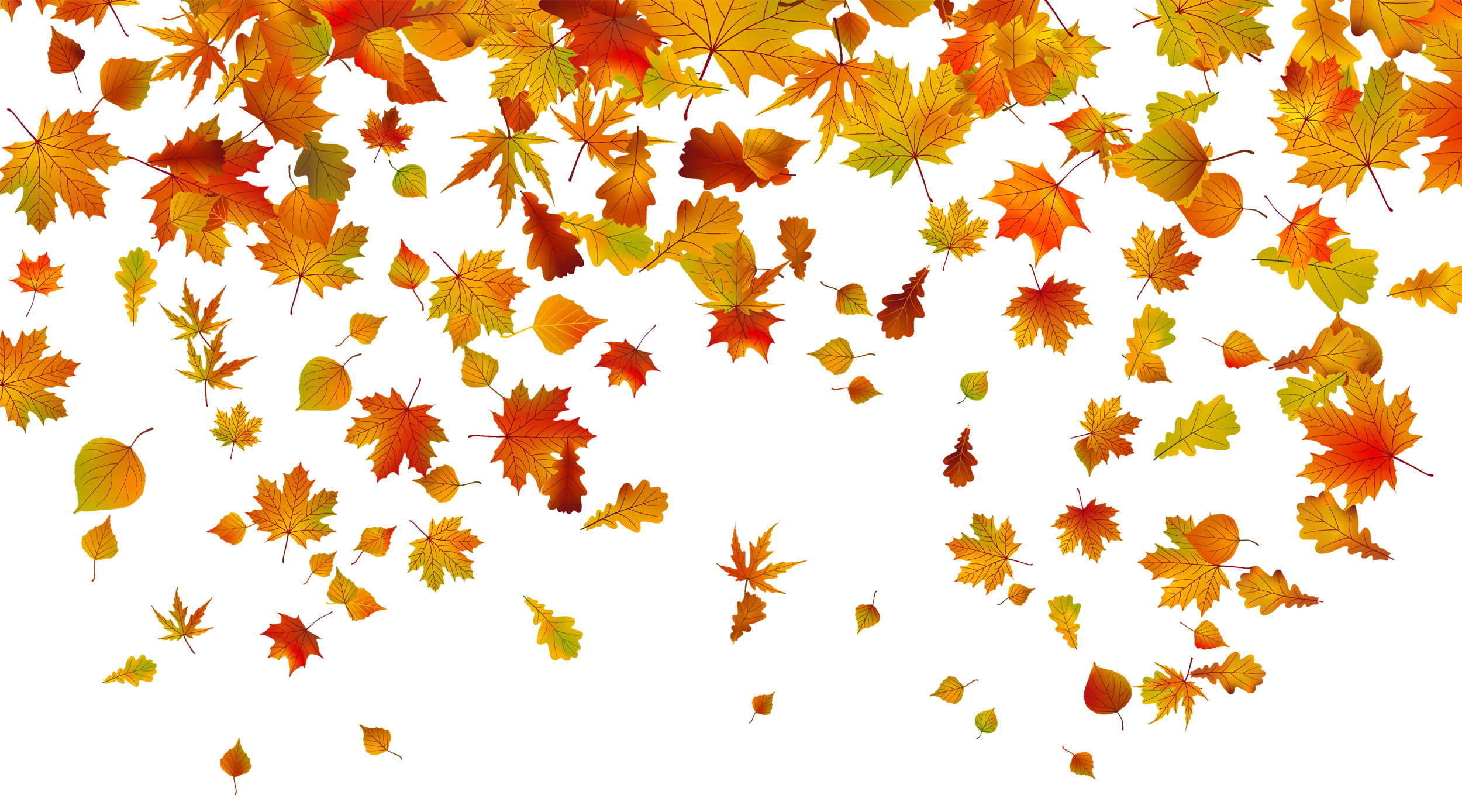 Fall leaves clip art png. Transparent clipart image gallery