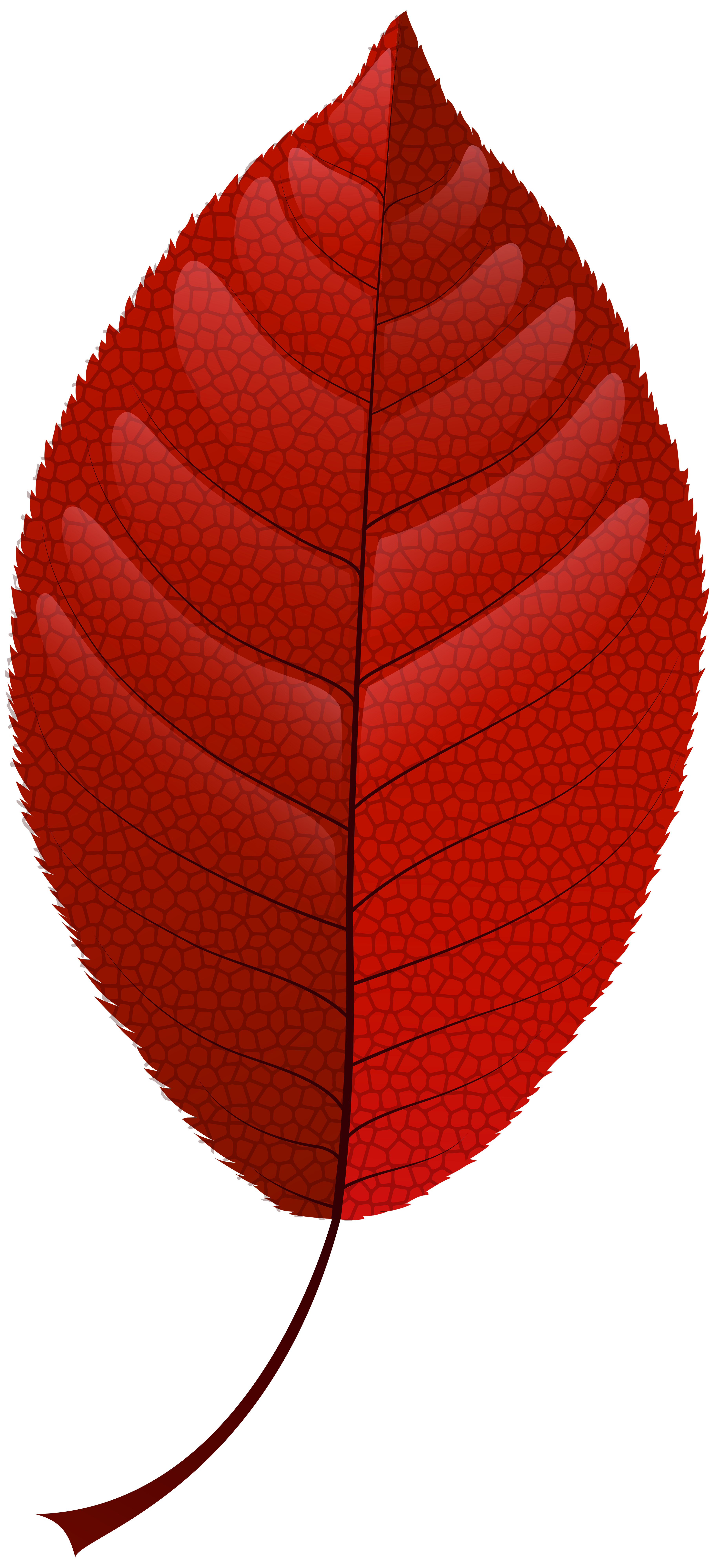 Fall leaf png. Red clip art best