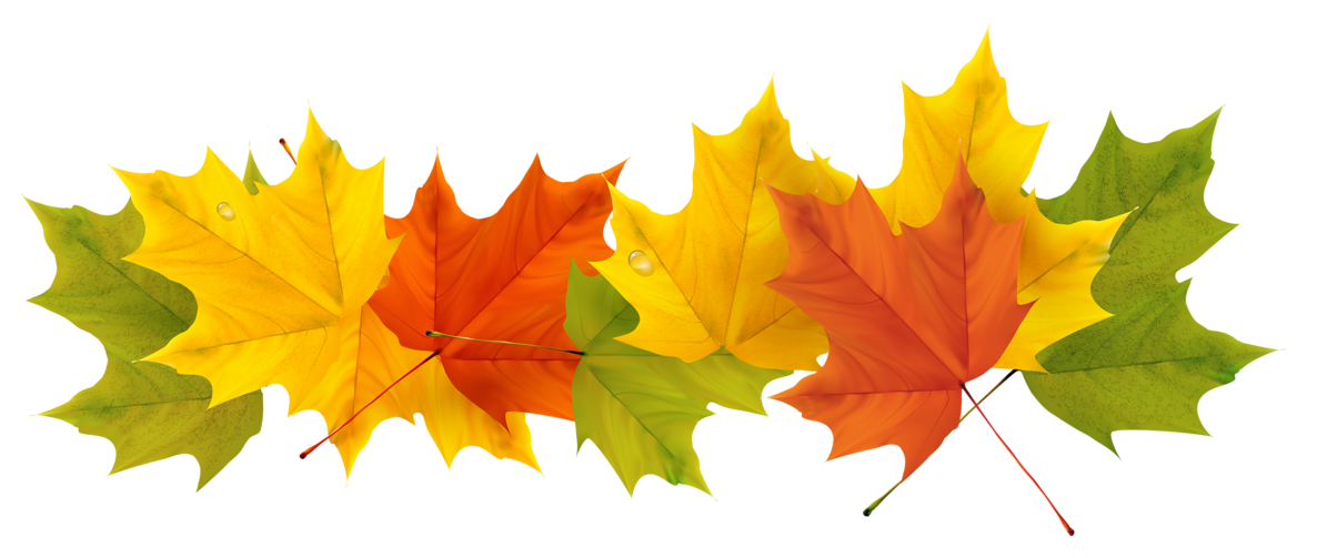Transparent Fall Leaves PNG Picture