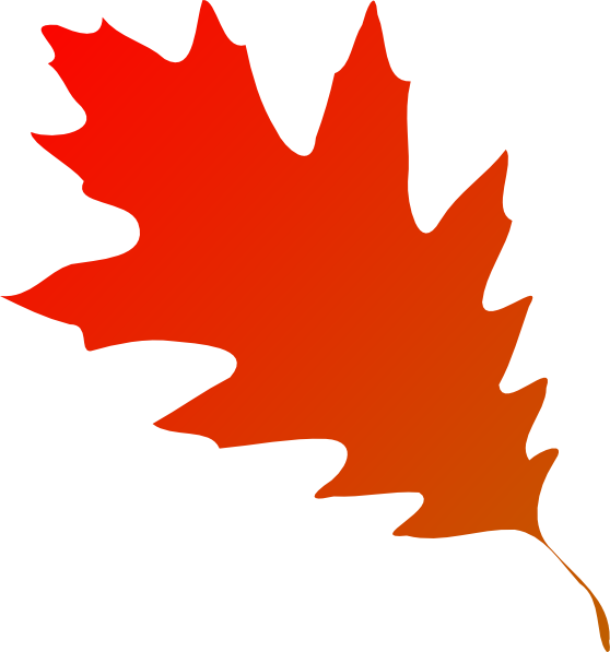 Fall leaf vector png. Autumn red orange clip