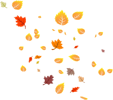 Fall leaves corner border png. Autumn images in collection