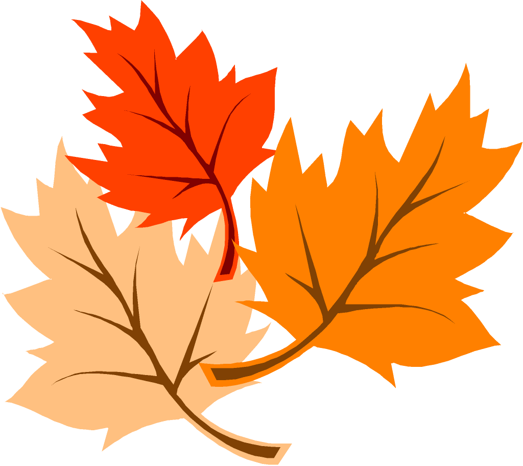 Fall leaves corner border png. Maple leaf clipart at