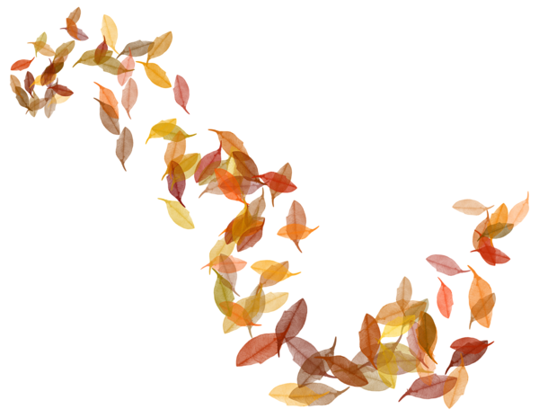 Fall leaves corner border png. Transparent image rame i