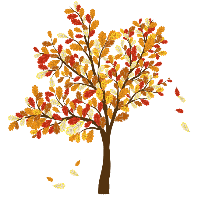 Fall leaves falling from a tree png real trees. Collection of background